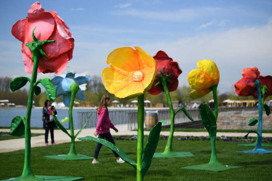 Die Landesgartenschau überzeugt immer wieder mit außergewöhnlichen Ausstellungen.