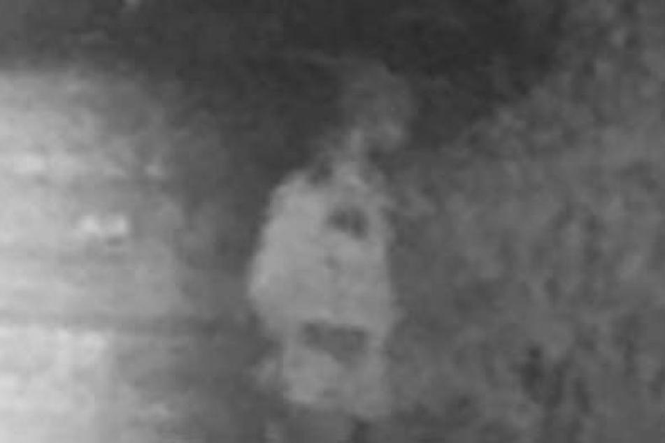 Mit diesem Fahndungsbild sucht die Polizei nach dem Täter.