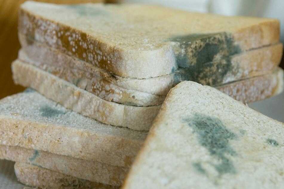 Diesen Toast sollte niemand mehr essen... (Symbolbild).
