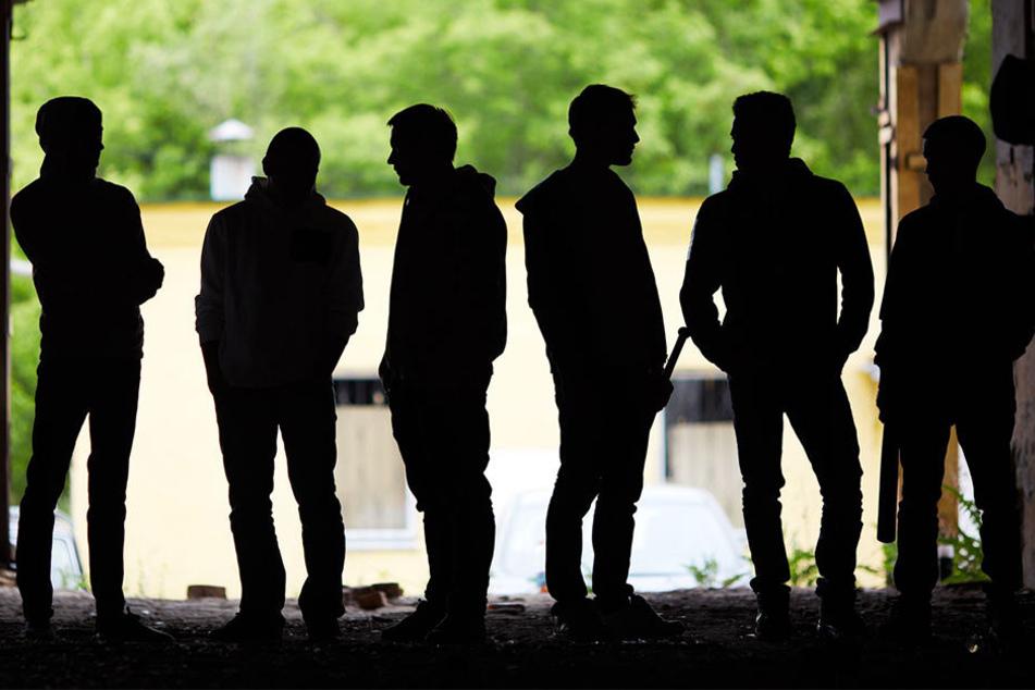 Polizeischlag gegen rumänischen Clan: Diebesbande gefasst