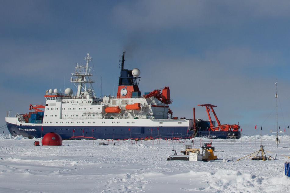 Silvester in der Arktis: Wann stößt man eigentlich am Nordpol an?