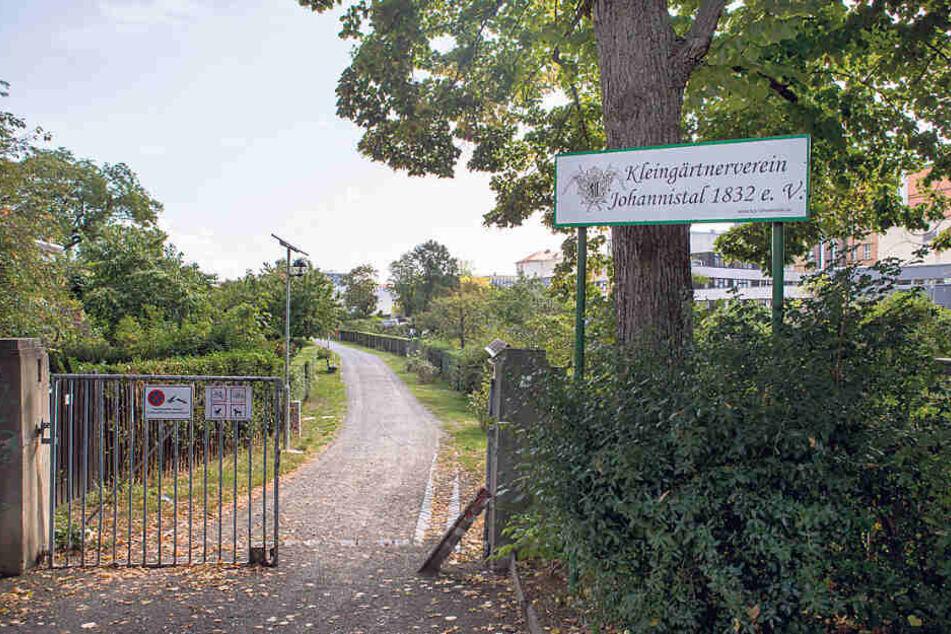 """""""Johannistal 1832"""" in Leipzig ist Sachsens ältester Kleingartenverein."""