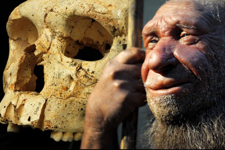 Der Neandertaler hatte eine ganz besondere Fähigkeit
