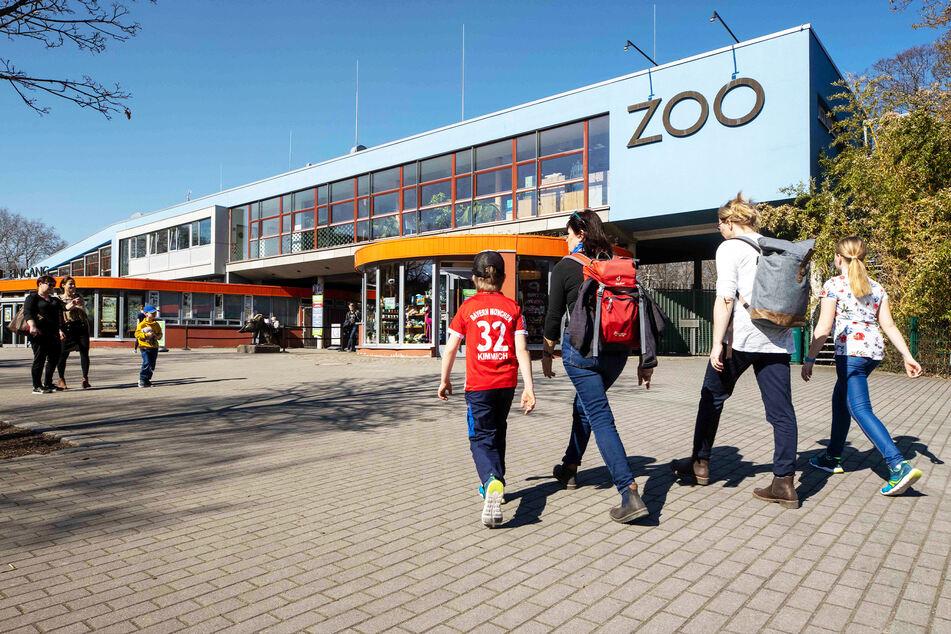 Der Zoo darf nur noch seinen Außenbereich öffnen.