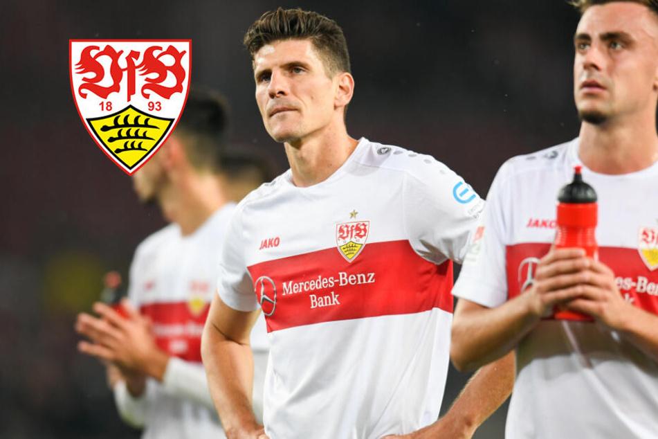 """""""Mentalität ist nicht abzusprechen!"""" Hat der VfB den Aufsteiger unterschätzt?"""