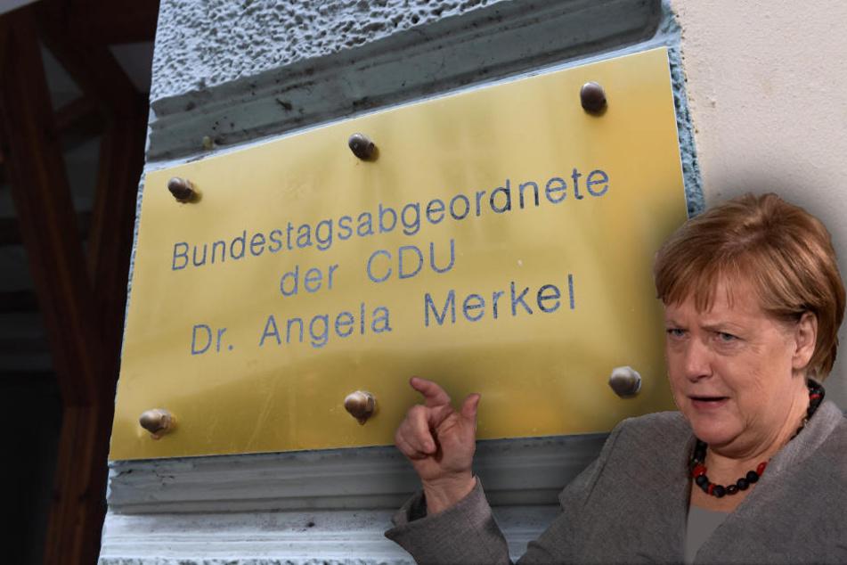 Schlechter kann man nicht ins Wochenende starten: Erst sind persönliche Daten online, dann klauen Unbekannte Merkels Messingtafel am Wahlkreisbüro. (Bildmontage)