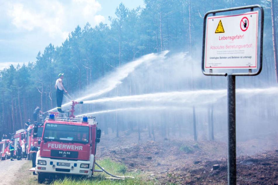Feuerwehrleute kämpfen in der Nähe der evakuierten Ortschaft Alt Jabel gegen den Waldbrand.