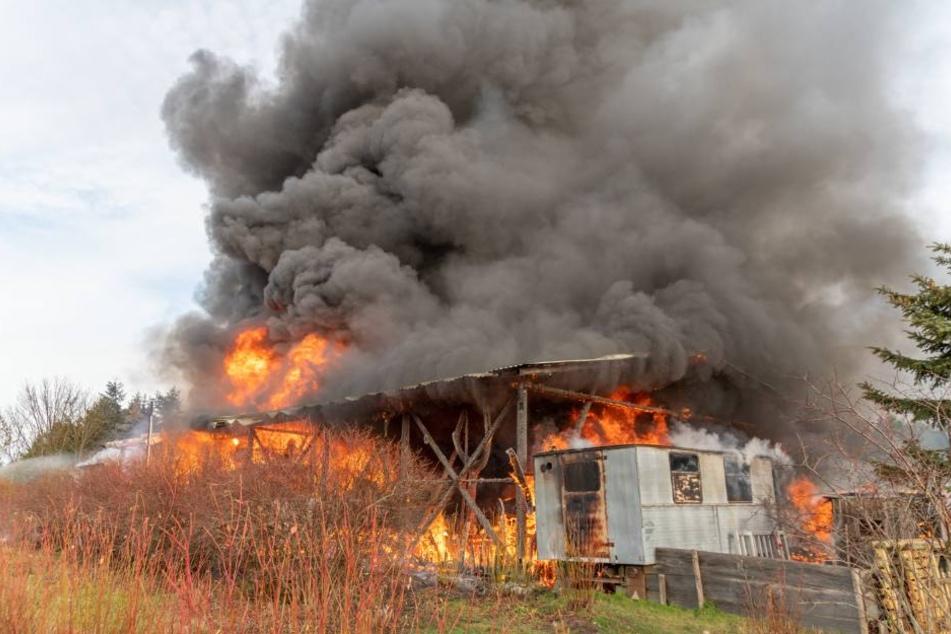 Die Lagerhalle stand komplett in Flammen.