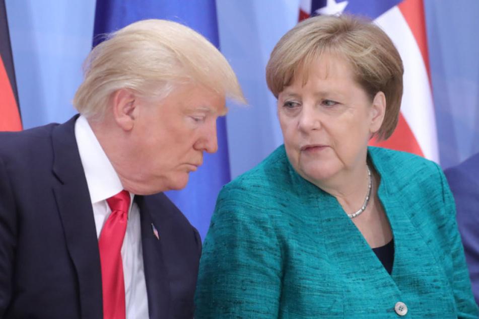 Bundeskanzlerin Angela Merkel (63, CDU) plant ein Treffen mit US-Präsident Donald Trump (71).