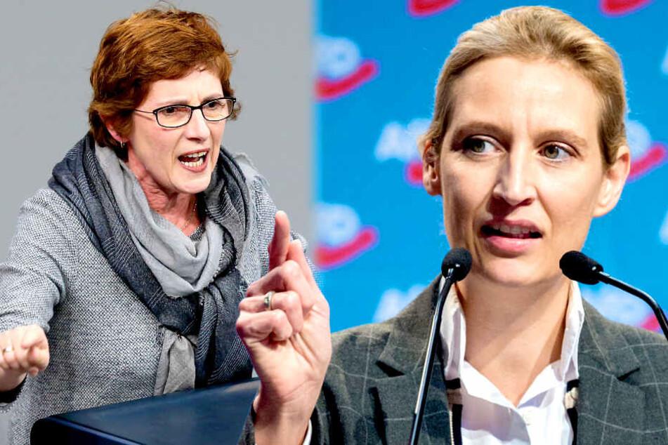 Grüne gegen Alice Weidel: Sie will uns für dumm verkaufen!