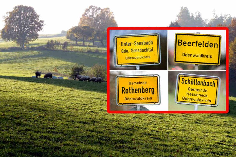 Neue Stadt: Im Odenwald fusionieren vier Ortschaften.