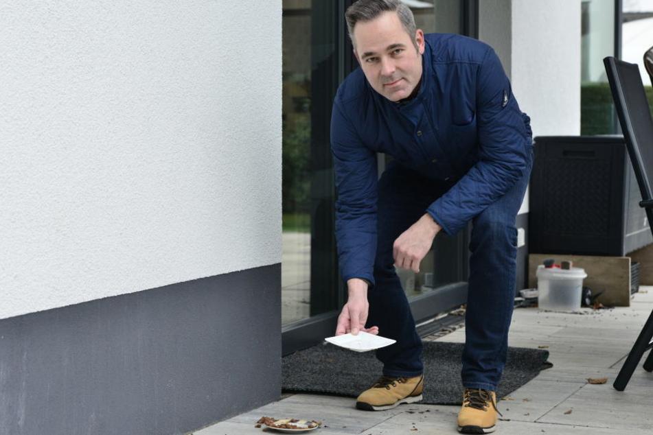 """Roter Kater im """"schwarzen Garten"""": CDU-Politiker Jan Hippold sucht den Besitzer der Katze mit halbem Schwanz."""