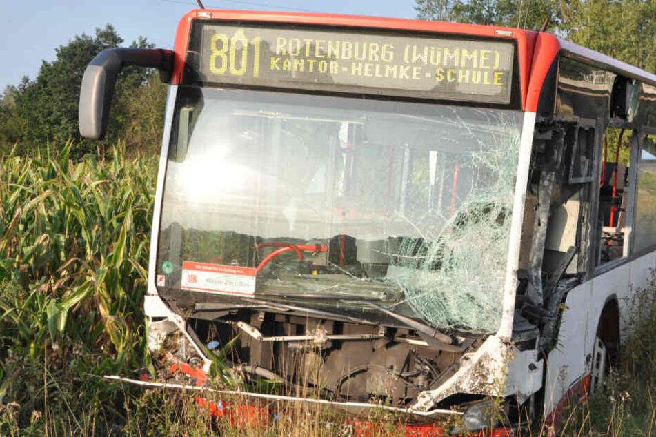 Schwerer Crash auf der Bundesstraße: Linienbus rast in Maisfeld