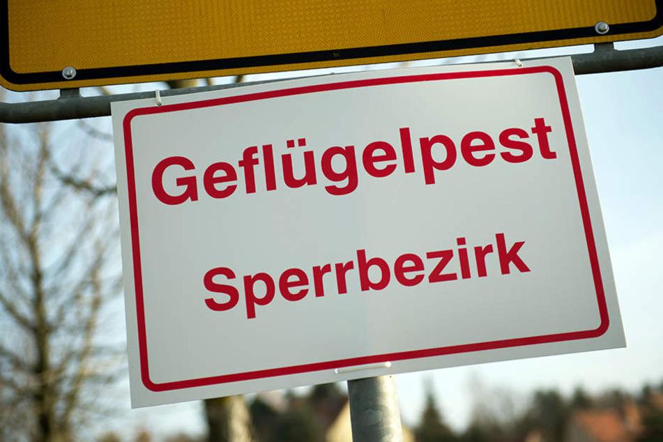 Große Teile des Leipziger Südens wurden am Dienstag zur Sperrzone erklärt.