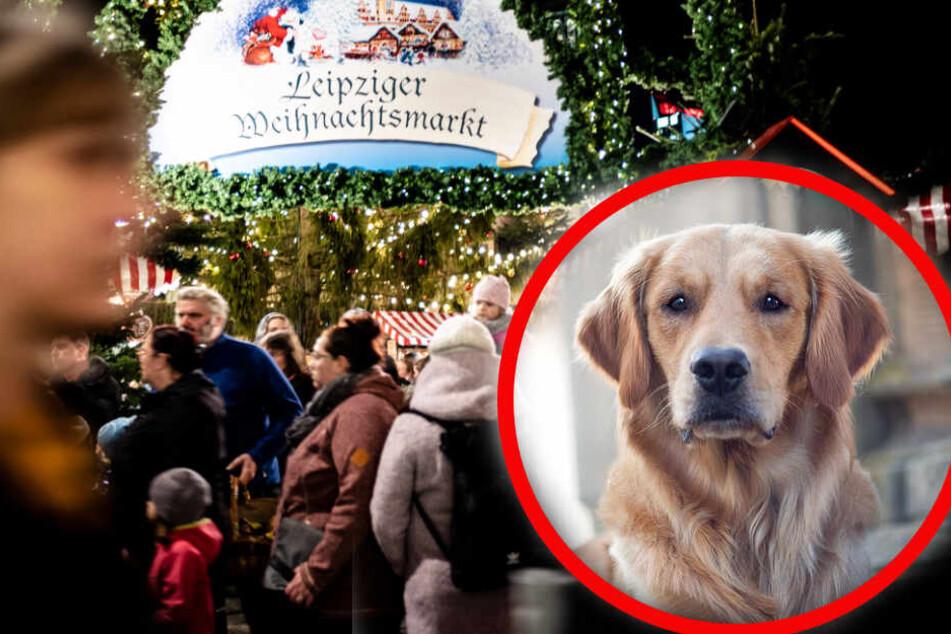 Mit Tritten und Scherben muss auf dem Weihnachtsmarkt aus Hundeperspektive gerechnet werden. (Bildmontage)