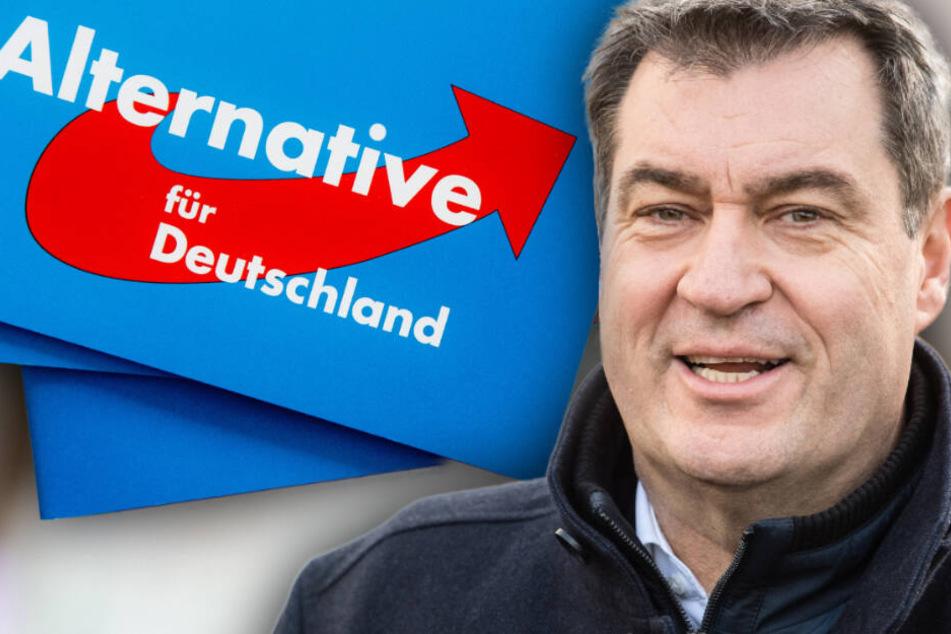 """Markus Söder sicher: AfD spielt """"zentrale Rolle"""" bei wachsendem Antisemitismus!"""