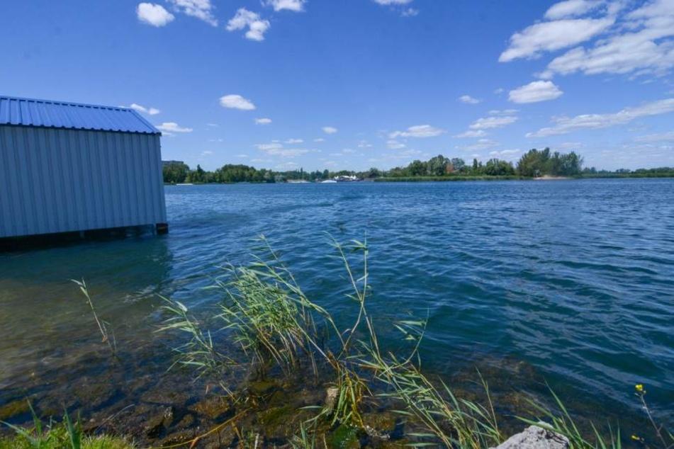 Im Neustädter See in Magdeburg wurde am Montag eine junge Frau tot gefunden. Aktuell wissen die Ermittler nicht, wer sie ist.