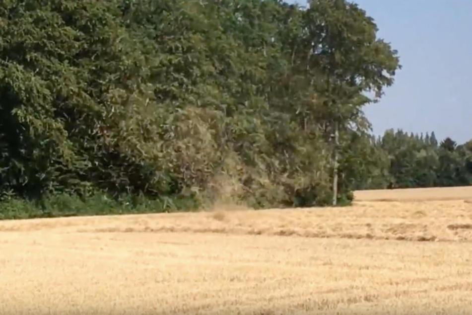 Ein Landwirt filmte, wie das Stroh durch die Luft gewirbelt wurde.