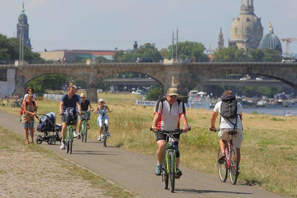 Der Elberadweg: Hier treffen sich Fußgänger, Radfahrer und manchmal auch noch Skater auf engstem Raum.