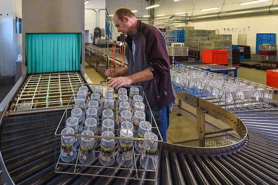 Der Herr der Becher: Mathias Thiele (51) spült mit seiner Firma im Jahr Millionen selber hergestellte Becher.