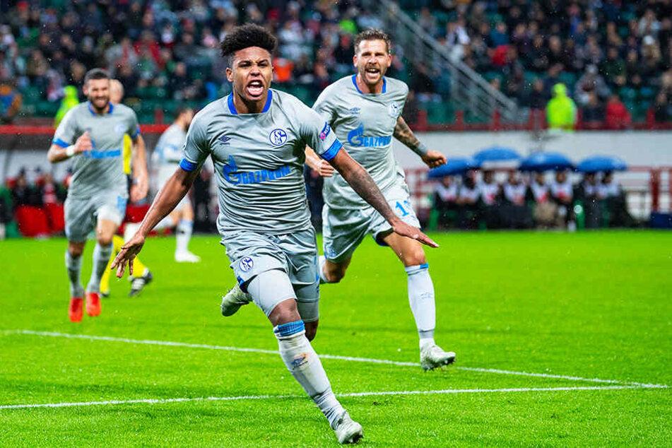Auch Schalkes Weston McKennie befindet sich in guter Form und dürfte gegen den BVB in der Startformation stehen.