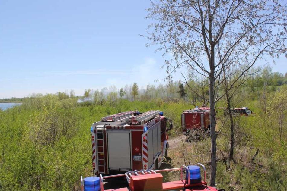 Zunächst musste sich die Feuerwehr durch unwegsames Gelände an die Brandstelle kämpfen.