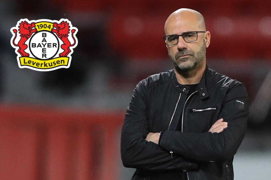 Bayer-Trainer Peter Bosz kritisiert 13:0-Sieg von Ex-Verein Ajax Amsterdam!