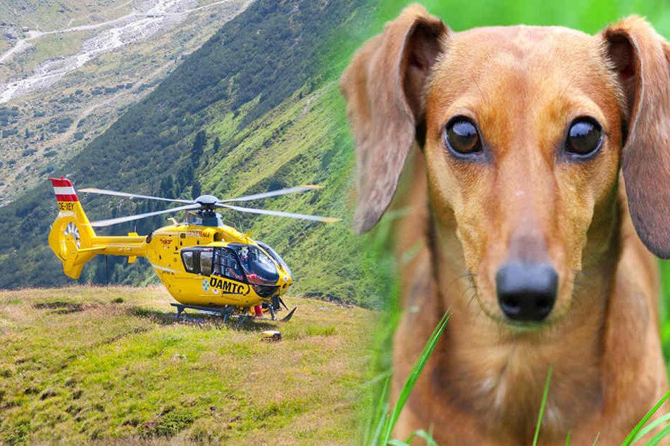 Der Wanderer wollte seinen Hund retten, stürzte dabei aber selbst in den Tod. (Symbolbild)