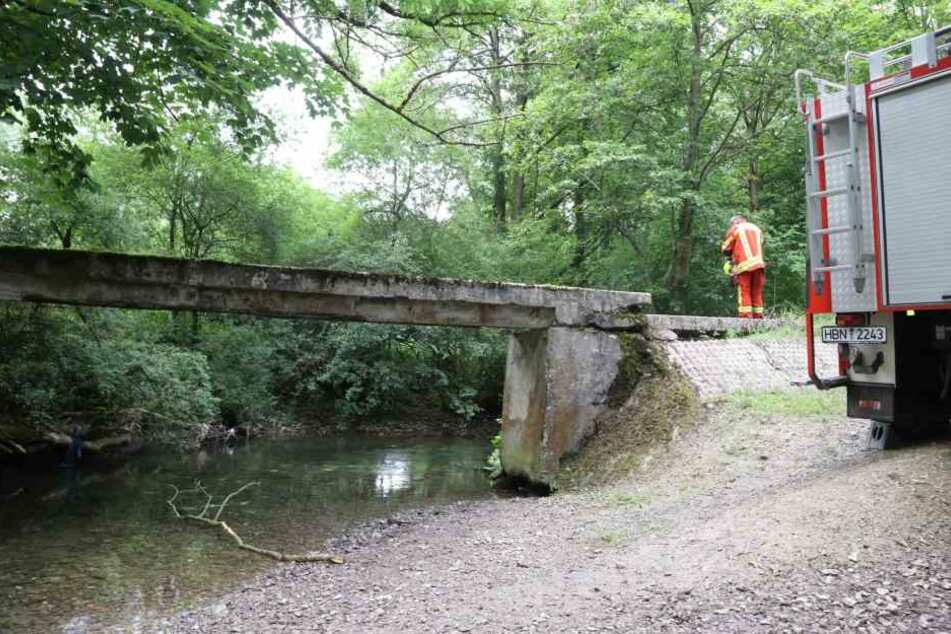 Hier stürzte der Junge in den Fluss.
