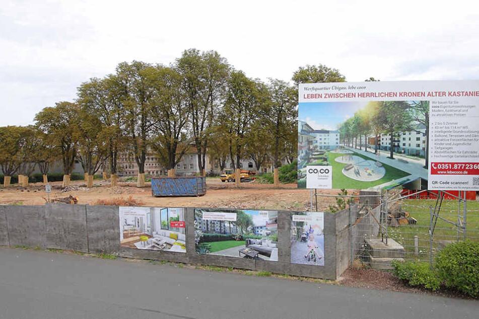 Gleich zwei neue Projekte: Übigau bekommt über 200 neue Wohnungen