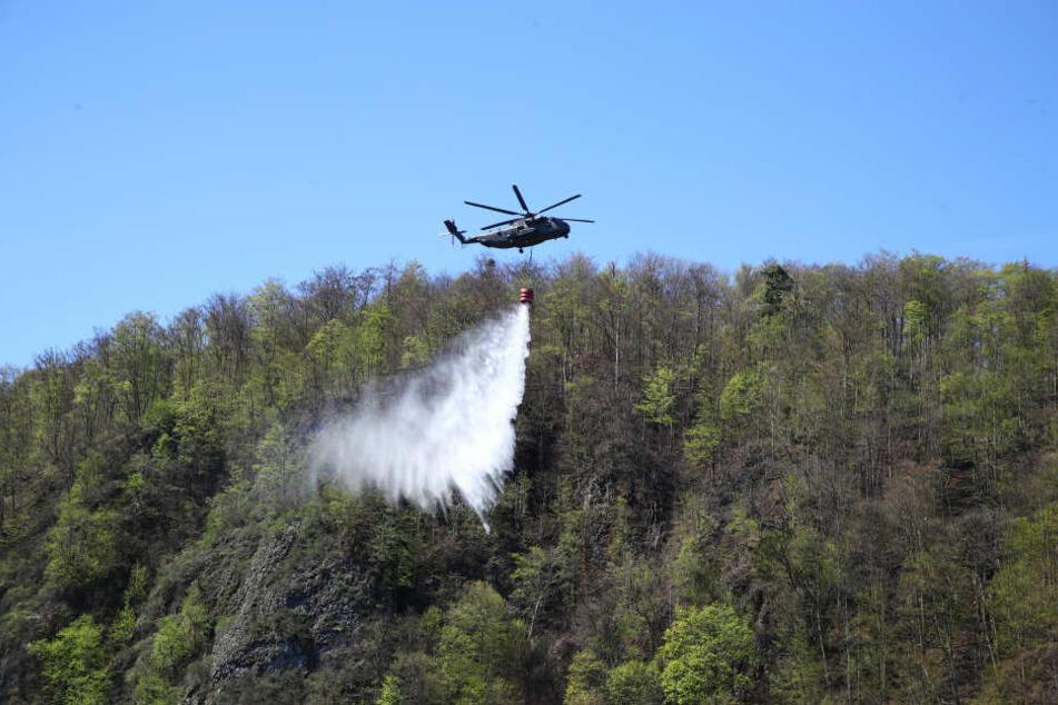 Auch Brände machten dem Wald in Thüringen immer wieder Probleme, wie hier an der Bleilochtalsperre.