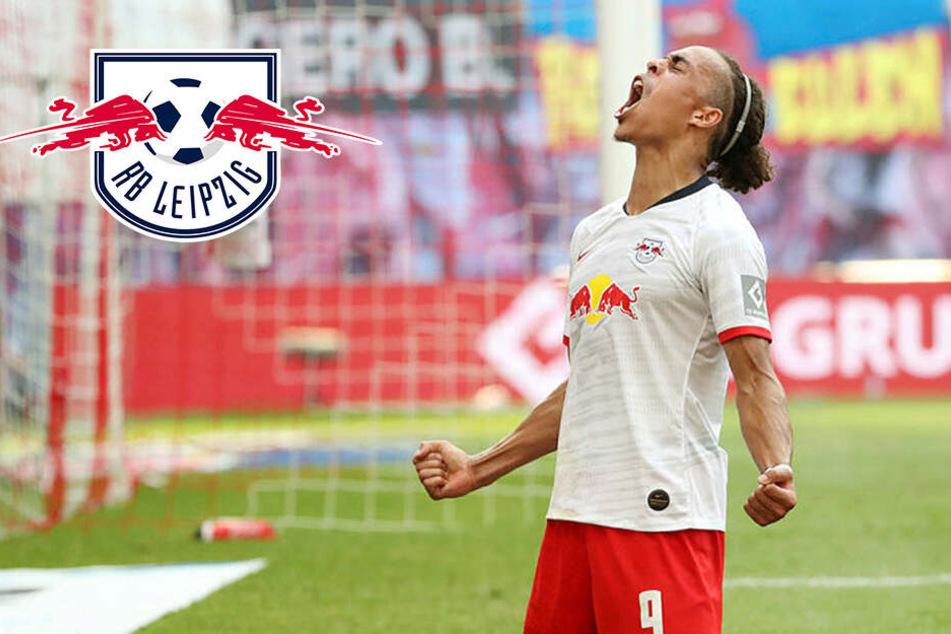 Champions-League-Irrsinn: RB Leipzig wieder mit mächtig Losglück