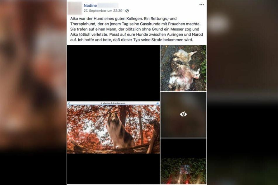 In Facebook kursieren mehrere Beiträge zu dem Vorfall.
