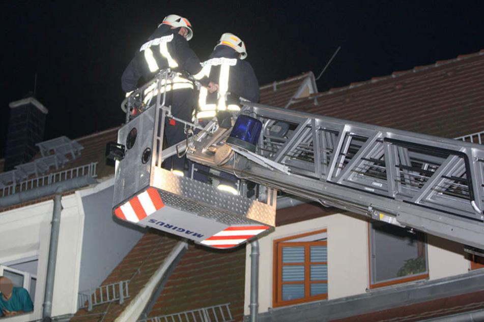 Mit der Drehleiter holten die Feuerwehrmänner das Tier vom Dach.