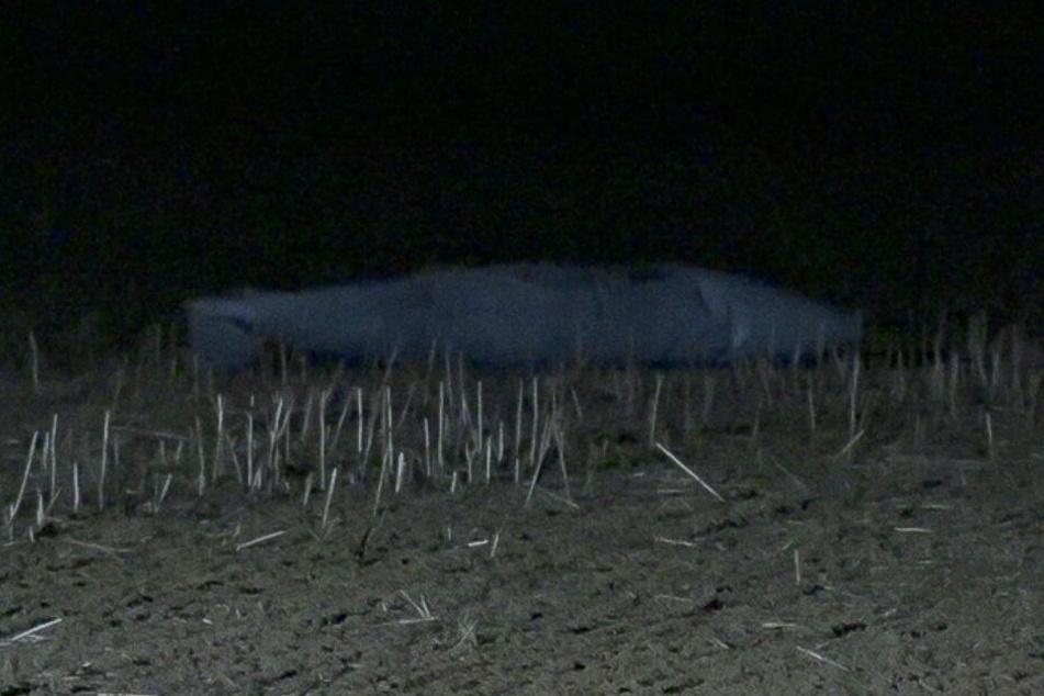 Eine Spaziergängerin fand einen Tornado-Zusatztank auf einem Feld.