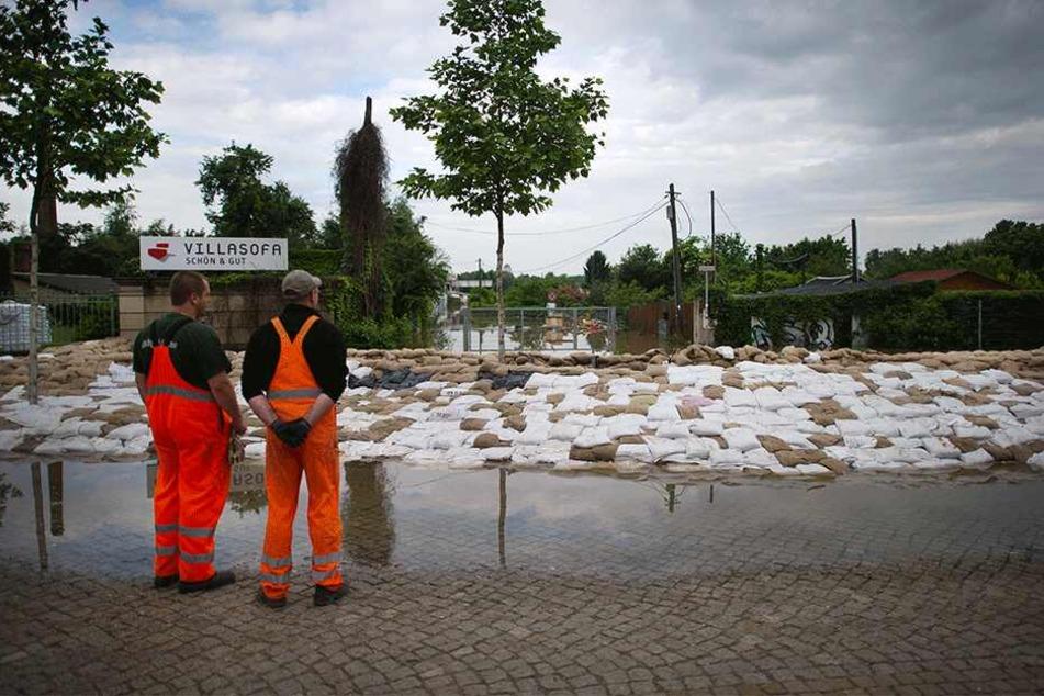 Zwei Stadt-Mitarbeiter stehen im Juni 2013 vor einer überfluteten Kleingartenanlage an der Leipziger Straße.