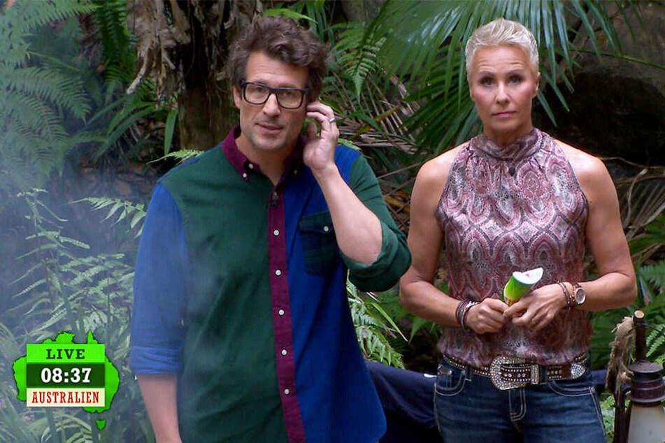 Dschungelcamp-Hammer! Nach Voting-Panne schmeißt RTL drei Stars raus