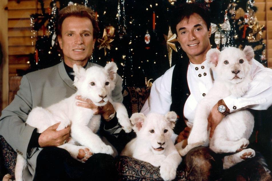Die deutschen Magier Siegfried (l, †81) und Roy (†75)sitzen im Dezember 1999 in Las Vegas (USA) vor einem Weihnachtsbaum.
