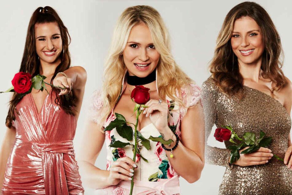 Natali (l), Denise (m) und Wioleta bekamen vorab jeweils eine Rose.