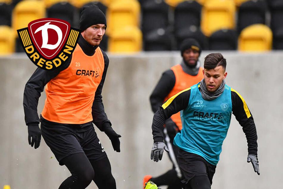 """Ballas spricht bei Dynamo Klartext: """"Müssen alle den Arsch hochkriegen"""""""