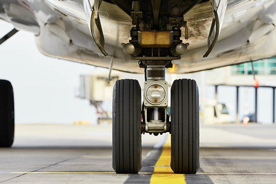 Techniker finden blinden Passagier kurz vor Abflug im Fahrwerk von Flugzeug
