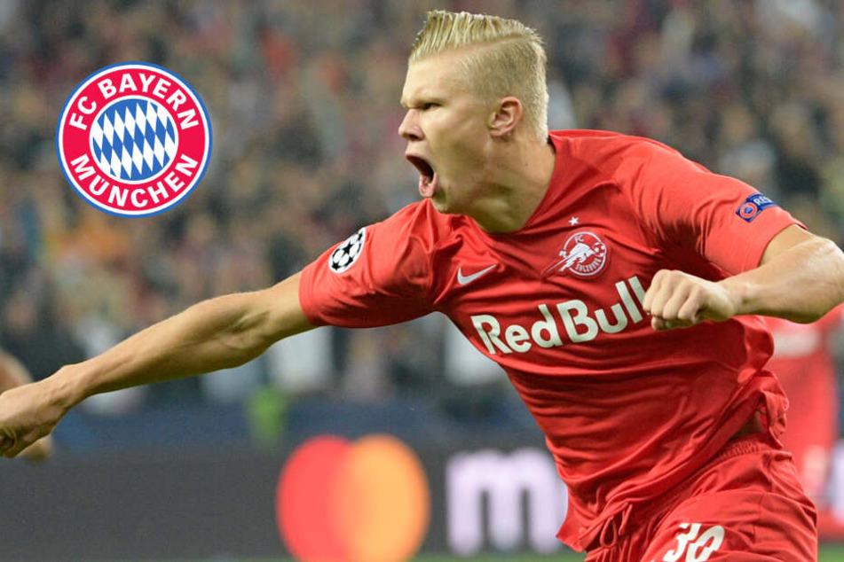 Holt FC Bayern Erling Haaland? Youngster kostet fast 40 Millionen Euro!