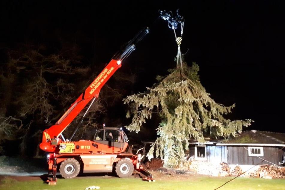 In Mülheim an der Ruhr war ein Baum durch ein Hausdach geschlagen.