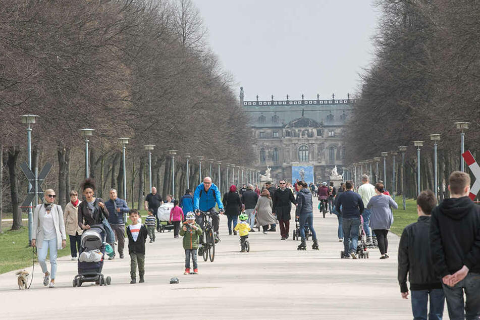 Raus an die frische Luft: Im Großen Garten tummelten sich am Wochenende die Dresdner und genossen den Frühling.