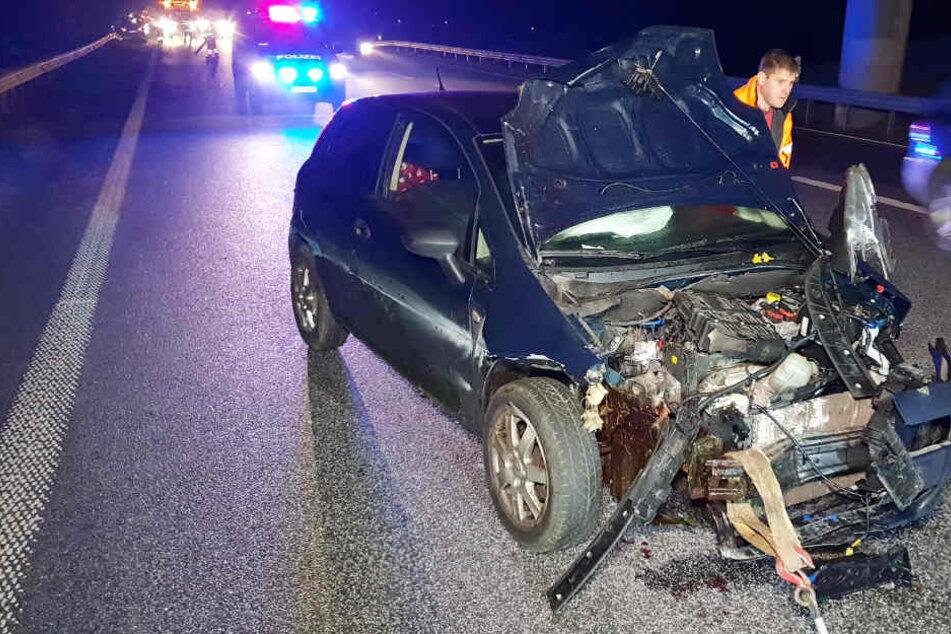 Das Front des Autos ist nach dem Zusammenprall mit den Tieren stark beschädigt.