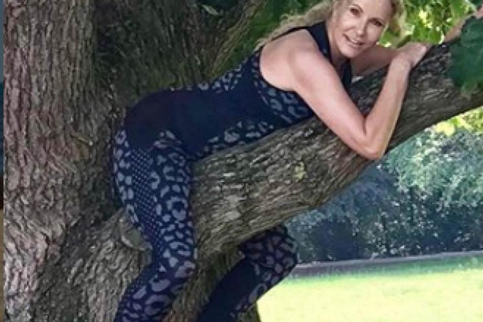 Wer chillt den hier im heißen Fitness-Body auf einem Baum?