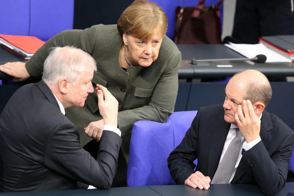 Wird die Berliner GroKo um Kanzlerin Angela Merkel (64, CDU), Innenminister Horst Seehofer (69, CSU) und Finanzminister Olaf Scholz (60, SPD) bis 2021 weiterregieren?