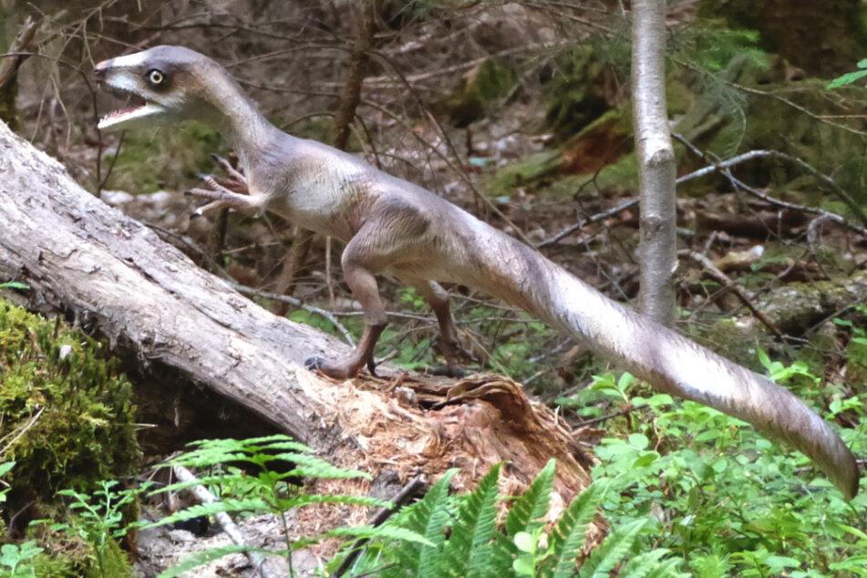 """Dieses vom Dinosaurier-Park Altmühltal zur Verfügung gestellte Foto zeigt das geklaute Modell des """"Sciurumimus albersdoerferi""""."""