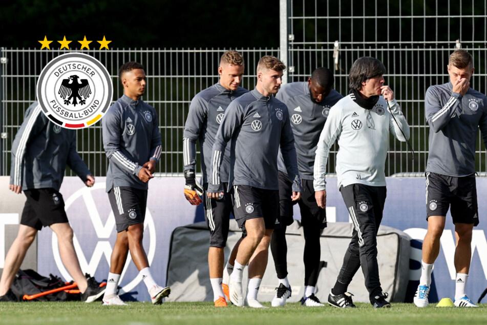 Corona-Tests bei DFB-Team negativ: Ein Spieler reist nach Hause
