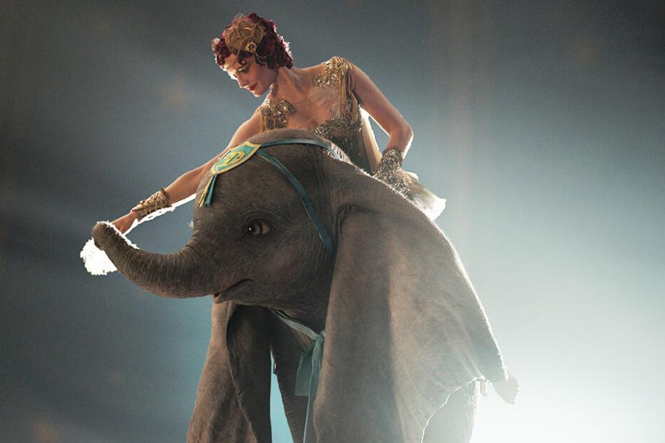 Zu Colette Marchant (oben, Eva Green) fasst Dumbo bald Vertrauen.